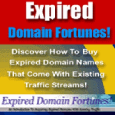 Product picture Expired Domain Fortunes Make More Money From Your Site